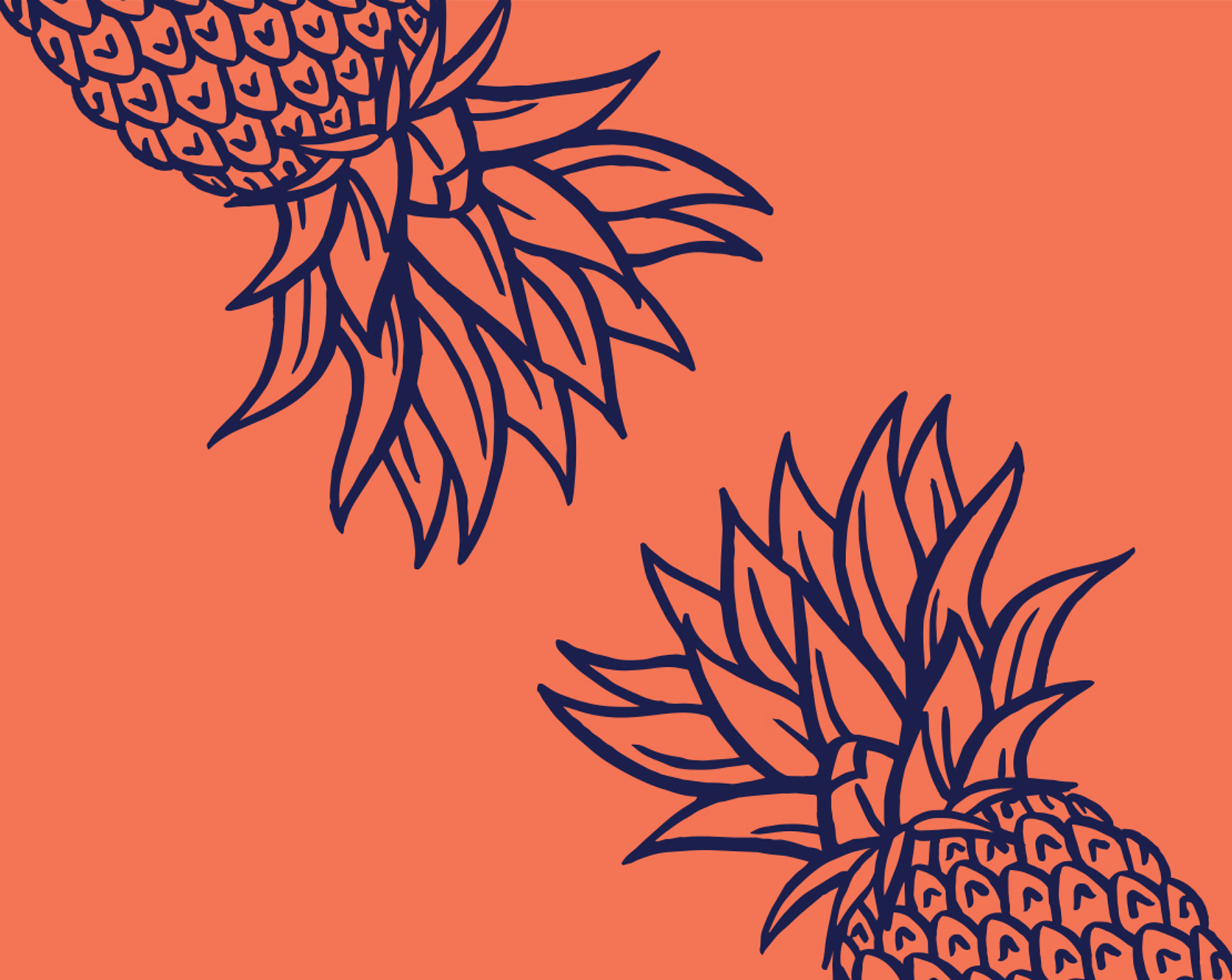 Queensland Literary Awards 2019 pineapple branding