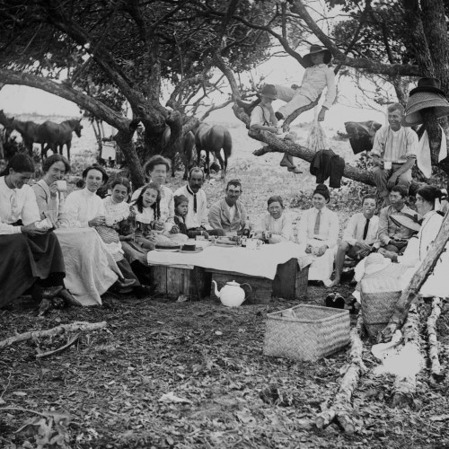 Family picnic in the Queensland bush 1900-1910