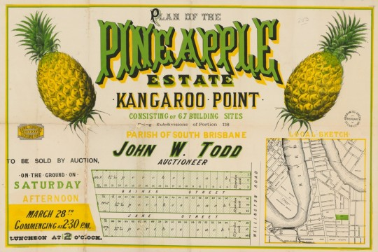 Plan of the Pineapple Estate Kangaroo Point Consisting of 67 building sites Being subdivision of Portion 118 Parish of South Brisbane