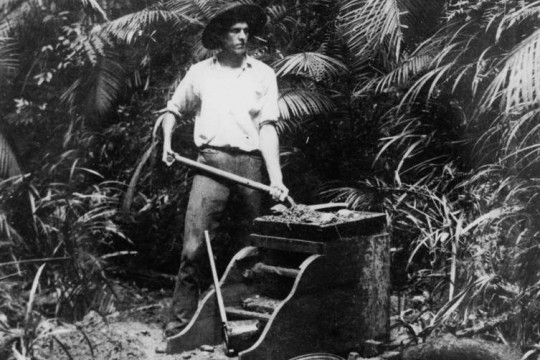Gold digger panning for gold, Queensland