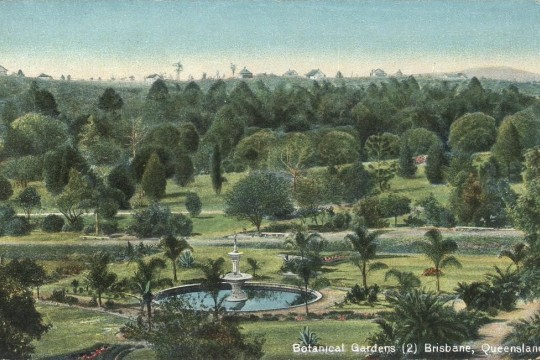 Botanical Gardens in Brisbane towards the southeast ca 1906