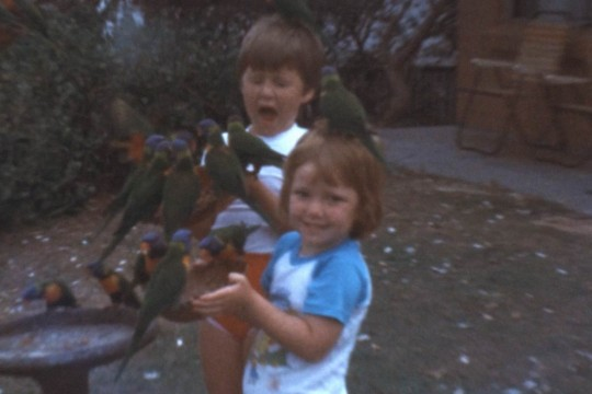 Still from Robert Stewart home movies of children and lorikeets