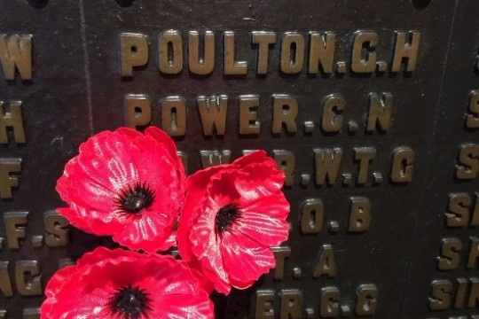 A picture of a plaque with poppies