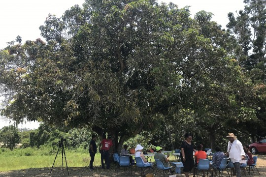 Joskeleigh community members sitting under a mango tree at Joskeleigh near Rockhampton Queensland Dec 2018