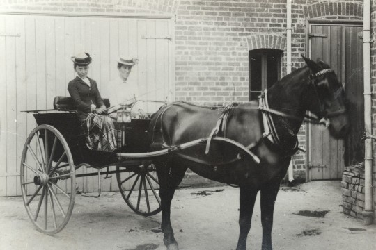 Ms Josephine Bedford and Dr Lilian Cooper in a horse and buggy in Brisbane 1900
