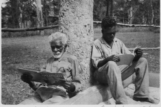 Aboriginal members reading traditional books located in the Bloomfield area North Queensland