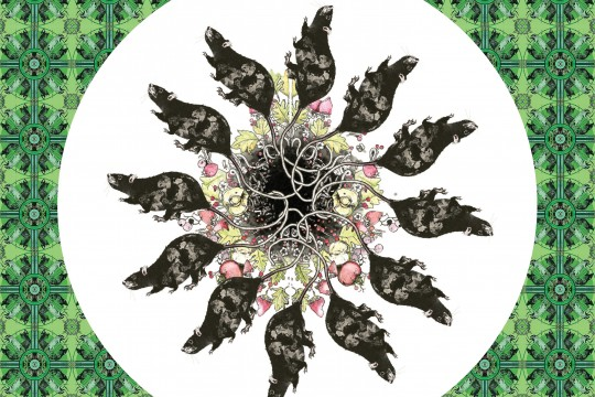 A circle of rats against a green background