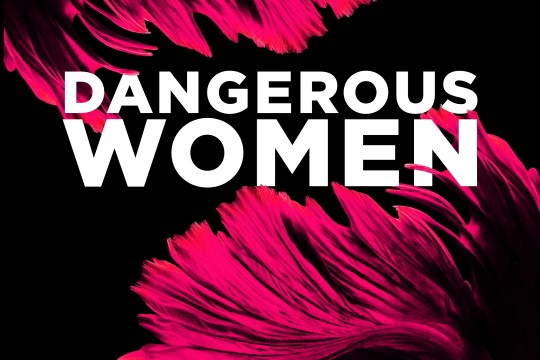 Dangerous Women visual identity text and pink feathers