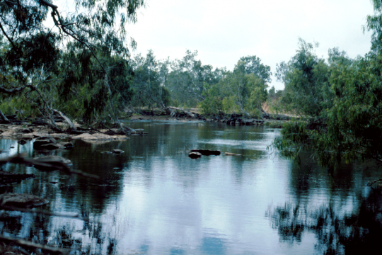 Scenic location on the Normanby River Cape York 1984