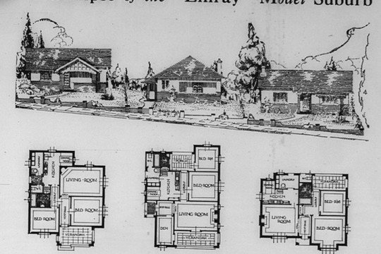 Advertisement for the Linray model suburb - sketch of three houses and three house plans