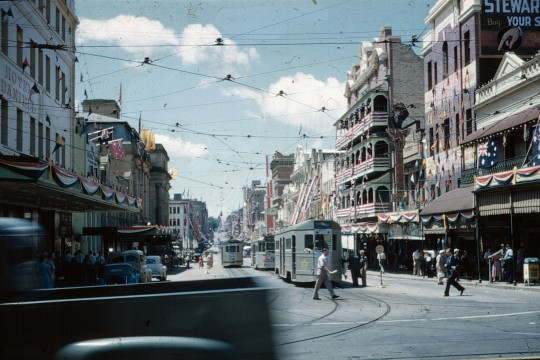 View along Adelaide Street from George Street with the buildings decorated for the Royal Visit 1954