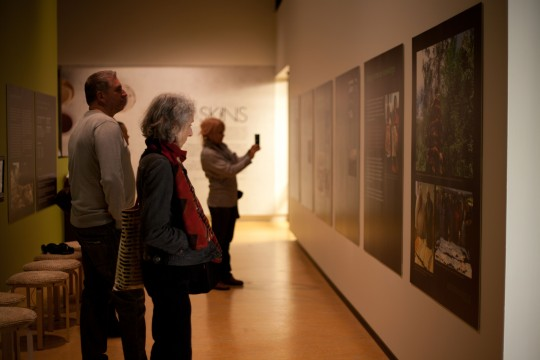 Group of people viewing exhibition