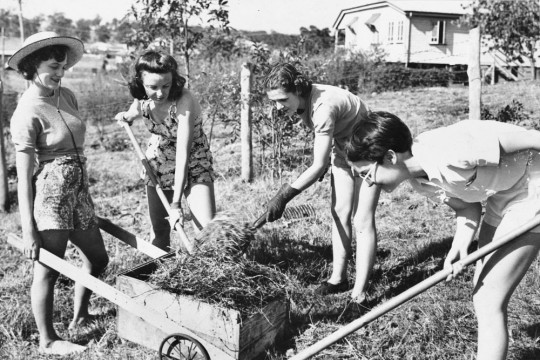 A group of women Digging for Victory 1941