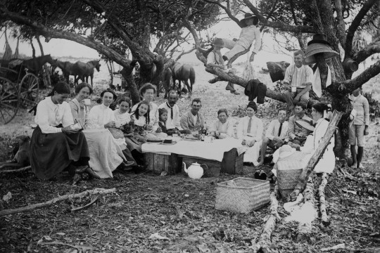 Family picnic in the Queensland bush, 1900-1910