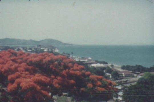View of Townsville 1954
