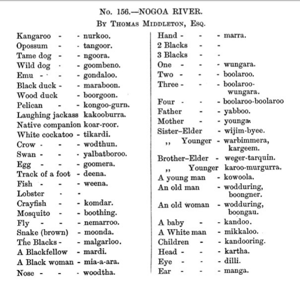 List of words collected from the Nogoa River 1870s