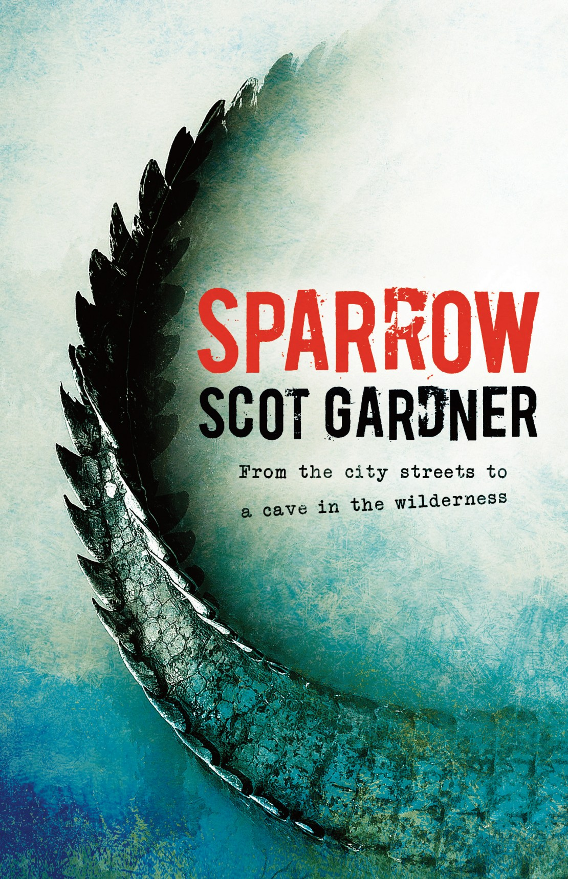 Sparrow by Scot Gardner book cover