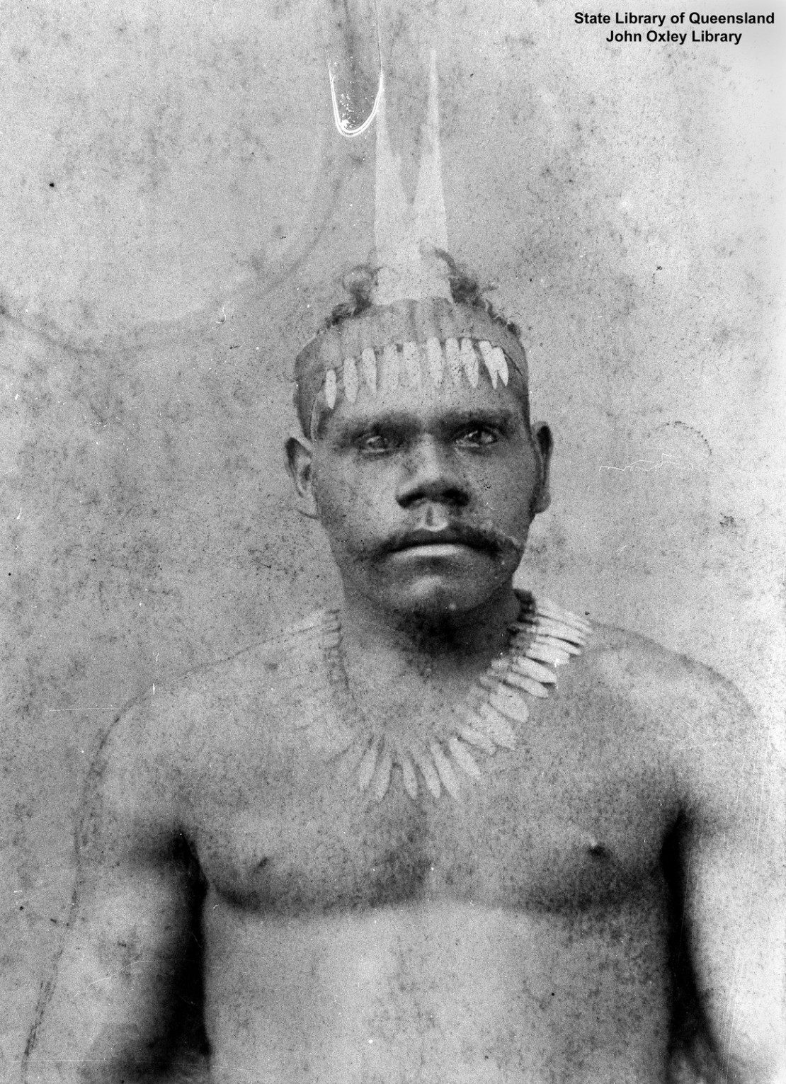 Wondunna wearing headdress decorated with kangaroo teeth Fraser Island ca 1900