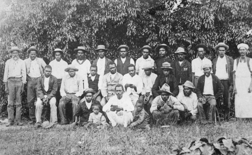 Australian South Sea Islanders at Mossman Queensland 1895 Photographer unknown John Oxley Library State Library of Queensland Negative no 127136